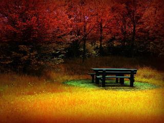 обои Уютный уголок в осеннем парке фото