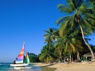 обои Яхта у тропического берега фото