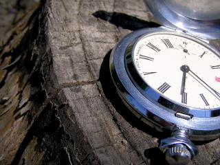 обои Часы на пеньке фото