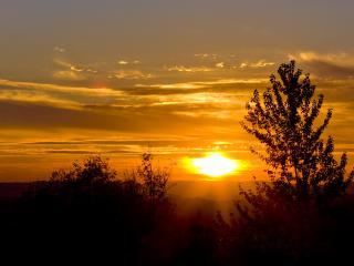 обои Жёлтый закат фото