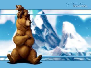обои Братец медвежонок фото