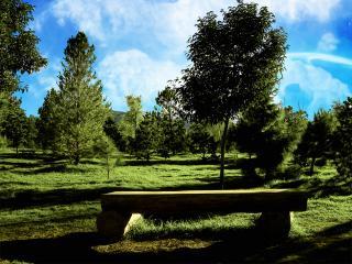 обои для рабочего стола: Зеленый парк