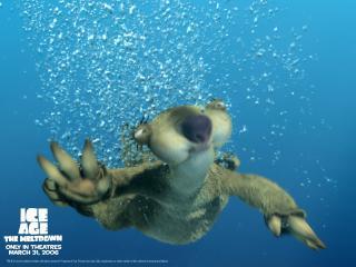 обои Глобальное потепление плавание фото