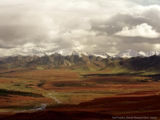 обои Холмистая долина на Аляске фото