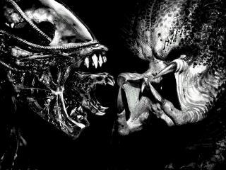 обои Два пришельца глаза в глаза фото