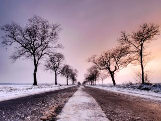 обои Зимняя дорога фото