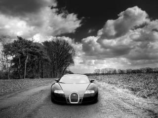 обои Bugatti на осенней дороге фото