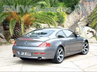 обои BMW 6-series E63 на фоне экзотичной пальмы фото