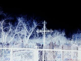 обои Крест фото