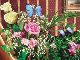 обои Бабочки на цветах фото