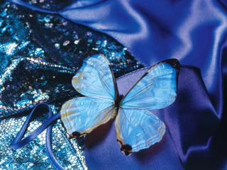 обои Голубая бабочка,   синяя ткань фото