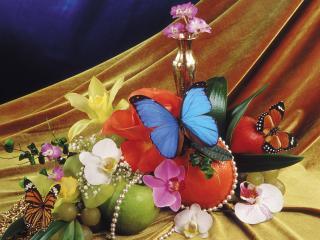обои Композиция из бабочек,   цветов,   и фруктов фото