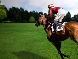 обои Верхом на коне фото