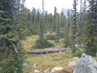 обои Маленькая долина рядом с горой фото