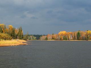 обои Осень на берегу темной реки фото