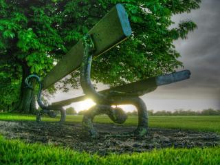 обои Лавочка под деревом фото