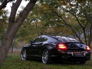 обои WALD Bentley Continental GT 2006 стопы фото