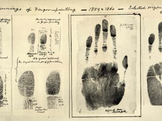 обои Отпечатки пальцев и рук фото