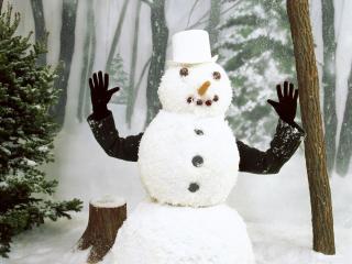 обои Снеговик с человеческими руками фото