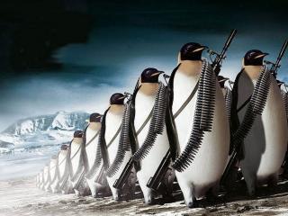 обои Отряд воинственных пингвинов фото