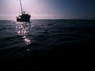 обои Море,  яхта и закат фото