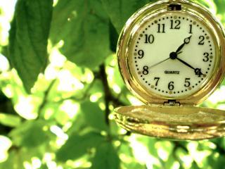обои Карманные  часы в листьях фото