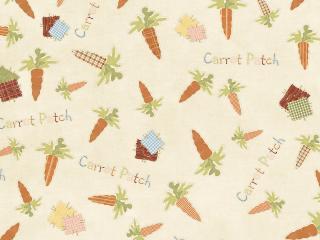 обои Текстура из морковки и надписей фото