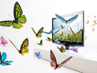 обои Светлая комната,   монитор и бабочки фото