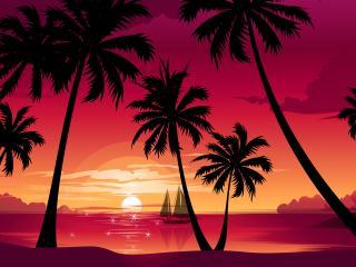 обои Силуэты пальм от заходящего солнца фото