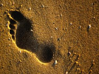 обои След на песке фото
