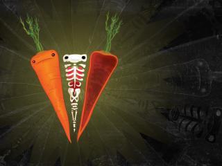 обои Морковка и ее скелет фото