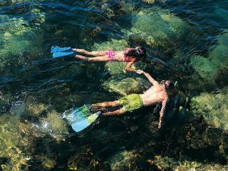 обои Плавание с трубкой и ластами фото