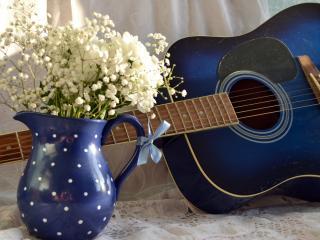 обои Синяя гитара и белые цветы в горшочке фото