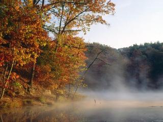 обои Осенняя дымка фото