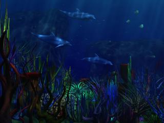 обои Фантастические водоросли и дельфины фото