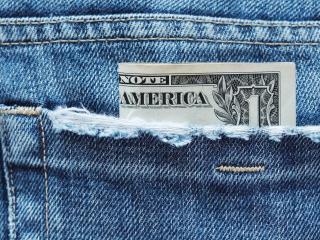 обои Бакс в кармане джинсов фото