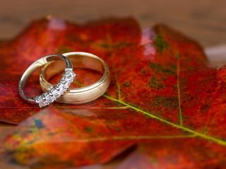 обои Кольца на осеннем листе фото