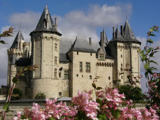 обои Замок с башнями конус фото