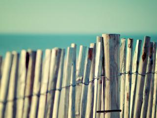 обои Изгородь из деревяных палок фото