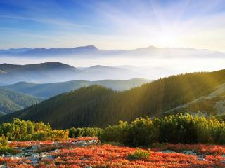обои Теплое утро в горах фото