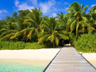 обои Кладка к морю и зеленый тропический берег фото
