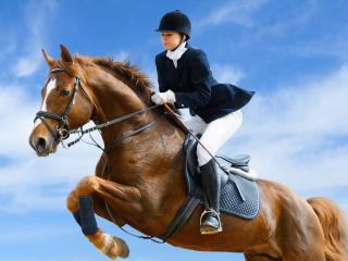 обои Девушка в прыжке на лошади фото