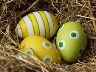 обои Яйца с узорами на сене фото