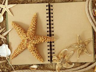 обои Блокнот с ракушками на песке фото