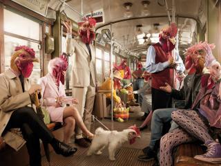 обои Вагон метро с людьми курицами и петухами фото