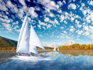 обои Белые парусники на озере фото