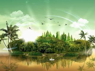 обои Птицы лебеди у зеленого острова фото