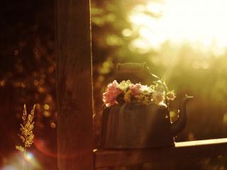 обои Чайник украшенный цветами фото