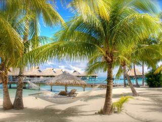 обои Гамак между пальм на песочном пляже,   бунгала фото
