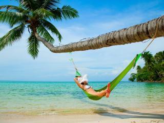 обои Девушка под пальмой в гамаке фото